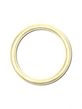 ISC Bronze 2 Inch O Ring